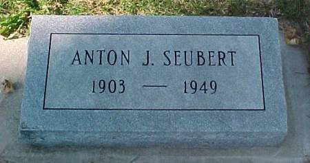 SEUBERT, ANTON J - Monona County, Iowa | ANTON J SEUBERT