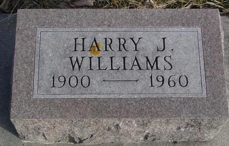 WILLIAMS, HARRY J. - Monona County, Iowa | HARRY J. WILLIAMS