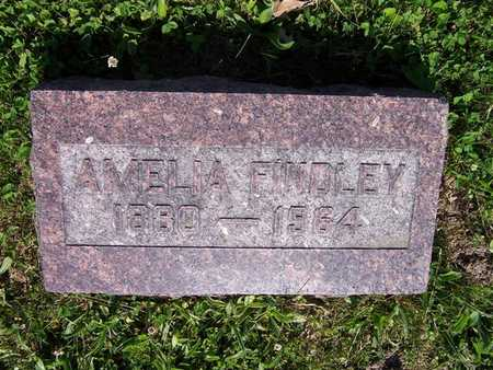 FRY FINDLEY, AMELIA - Monroe County, Iowa | AMELIA FRY FINDLEY