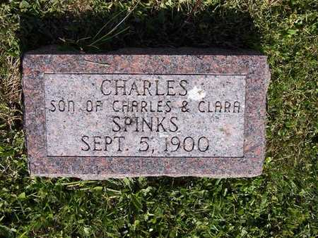 SPINKS, CHARLES - Monroe County, Iowa | CHARLES SPINKS
