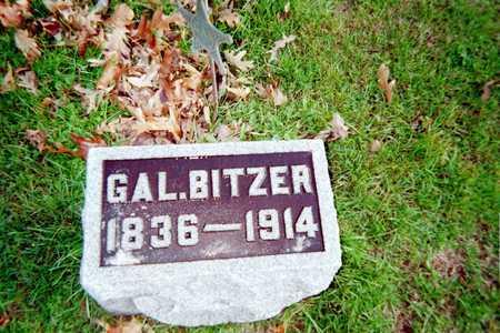BITZER, GAL. - Muscatine County, Iowa | GAL. BITZER