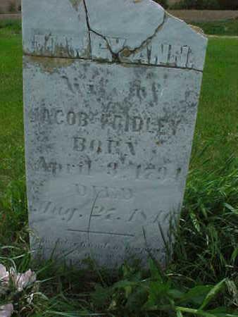 FRIDLEY, NANCY ANN - Muscatine County, Iowa | NANCY ANN FRIDLEY