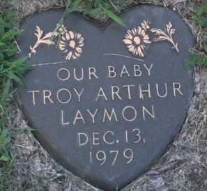 LAYMON, TROY  ARTHUR - Muscatine County, Iowa | TROY  ARTHUR LAYMON