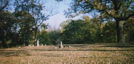 NYE, CEMETERY VIEW - Muscatine County, Iowa | CEMETERY VIEW NYE