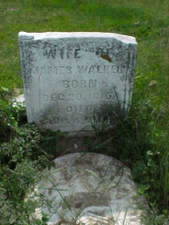 WALKER, MARY - Muscatine County, Iowa | MARY WALKER