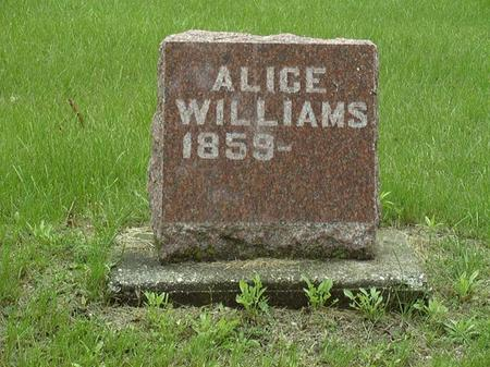 WILLIAMS, ALICE - Muscatine County, Iowa | ALICE WILLIAMS