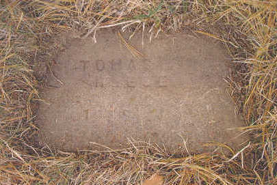 REESE, THOMAS I. - Page County, Iowa   THOMAS I. REESE