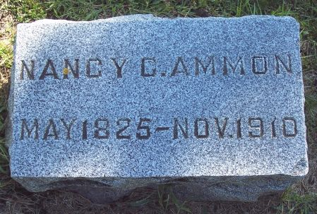 AMMON, NANCY CHRISTENE - Palo Alto County, Iowa | NANCY CHRISTENE AMMON