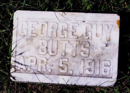BUTTS, GEORGE GUY - Palo Alto County, Iowa | GEORGE GUY BUTTS