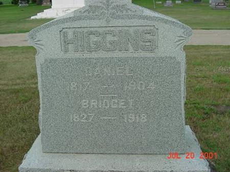 HIGGINS, DANIEL & BRIDGET (JOYNT) - Palo Alto County, Iowa | DANIEL & BRIDGET (JOYNT) HIGGINS