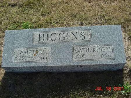 HIGGINS, CATHERINE J - Palo Alto County, Iowa | CATHERINE J HIGGINS