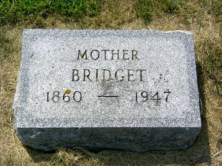 O'BRIEN, BRIDGET - Palo Alto County, Iowa | BRIDGET O'BRIEN