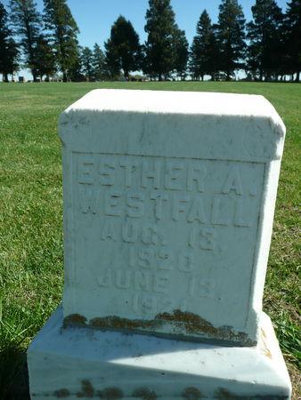 WESTFALL, ESTHER - Palo Alto County, Iowa   ESTHER WESTFALL