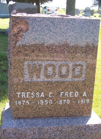 WOOD, FRED ALEXANDER - Palo Alto County, Iowa | FRED ALEXANDER WOOD