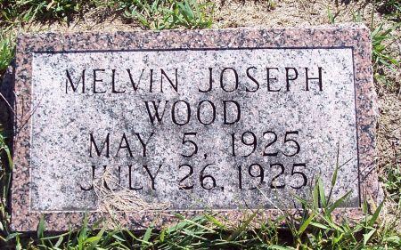WOOD, MELVIN JOSEPH - Palo Alto County, Iowa   MELVIN JOSEPH WOOD