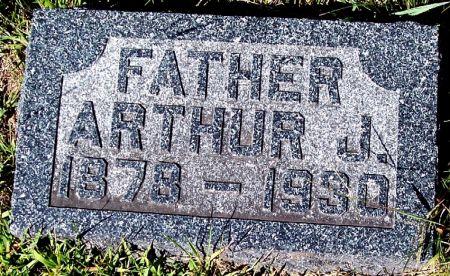 ZEIGLER, ARTHUR J - Palo Alto County, Iowa | ARTHUR J ZEIGLER