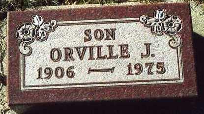 CHAPMAN, ORVILLE JONATHAN - Plymouth County, Iowa | ORVILLE JONATHAN CHAPMAN