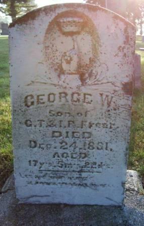 FREER, GEORGE W. - Plymouth County, Iowa | GEORGE W. FREER