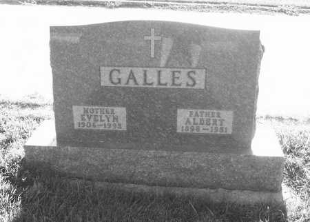 GALLES, ALBERT - Plymouth County, Iowa | ALBERT GALLES