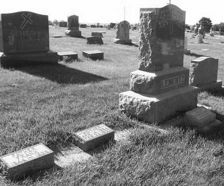 LENERTZ, FAMILY PLOT - Plymouth County, Iowa | FAMILY PLOT LENERTZ