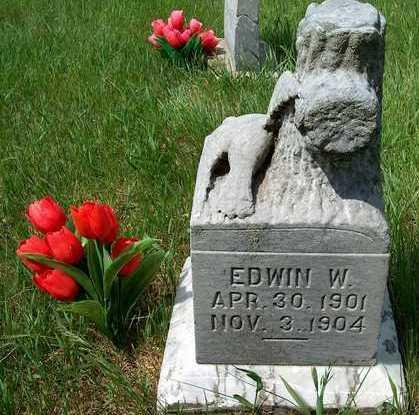 PAGE, EDWIN W. - Plymouth County, Iowa | EDWIN W. PAGE