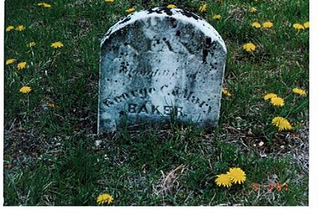 BAKER, INFANT - Polk County, Iowa | INFANT BAKER