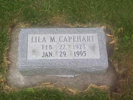 COOK CAPEHART, LILA MAY - Polk County, Iowa | LILA MAY COOK CAPEHART