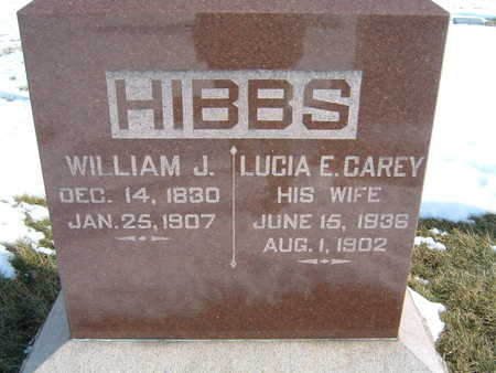 CAREY HIBBS, LUCIA E. - Polk County, Iowa | LUCIA E. CAREY HIBBS