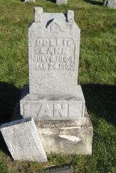 LANE, DOLLIE - Polk County, Iowa | DOLLIE LANE