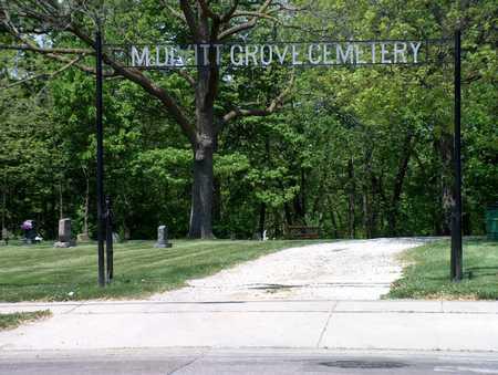 MCDIVITT GROVE, CEMETERY - Polk County, Iowa | CEMETERY MCDIVITT GROVE