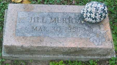 MERICAL, JILL - Polk County, Iowa | JILL MERICAL