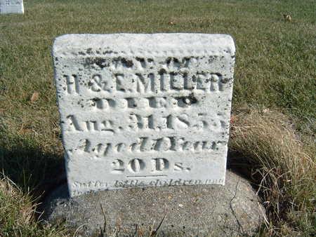 MILLER, DAU OF H. & E. - Polk County, Iowa   DAU OF H. & E. MILLER