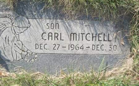 MITCHELL, CARL - Polk County, Iowa | CARL MITCHELL