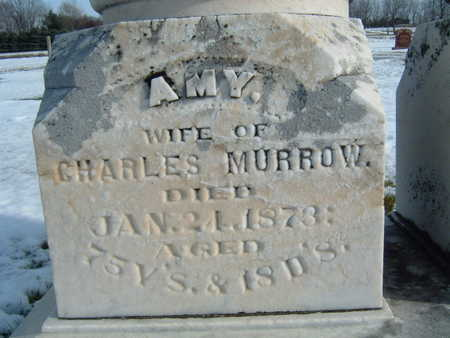 MURROW, AMY - Polk County, Iowa | AMY MURROW