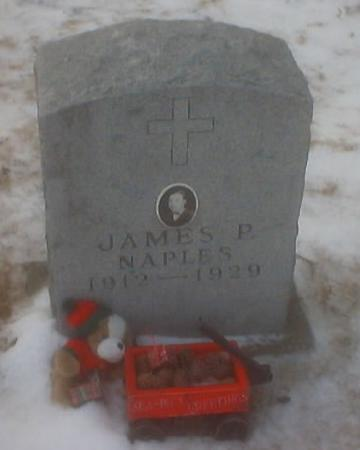 NAPLES, JAMES R. - Polk County, Iowa | JAMES R. NAPLES