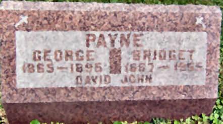 PAYNE, BRIDGET - Polk County, Iowa | BRIDGET PAYNE