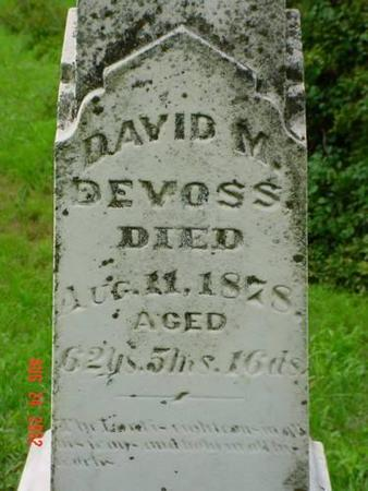 DEVOSS, DAVID - Pottawattamie County, Iowa | DAVID DEVOSS