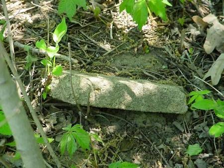 FOREST, UNKNOWN -4-1 - Pottawattamie County, Iowa   UNKNOWN -4-1 FOREST