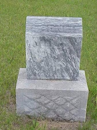 LARNED, HEADSTONE - Pottawattamie County, Iowa | HEADSTONE LARNED