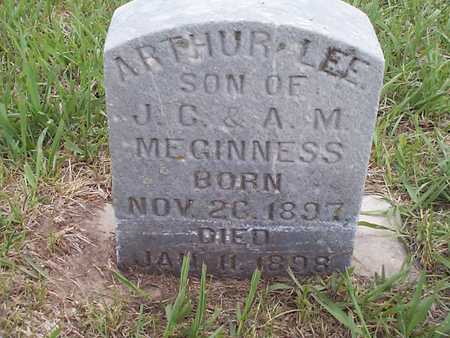 MEGINNES, ARTHUR LEE - Pottawattamie County, Iowa | ARTHUR LEE MEGINNES