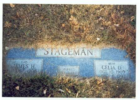STAGEMAN, JAMES HENRY - Pottawattamie County, Iowa | JAMES HENRY STAGEMAN