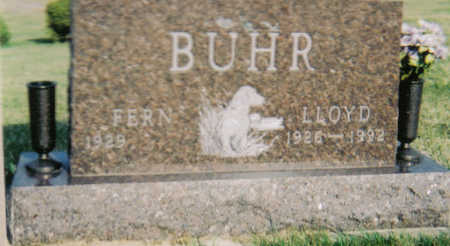 BUHR, LLOYD - Poweshiek County, Iowa | LLOYD BUHR