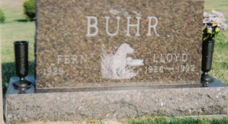 BUHR, LLOYD - Poweshiek County, Iowa | LLOYD BUHR