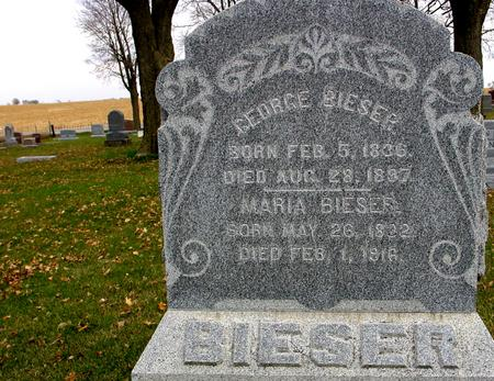 BIESER, GEORGE - Sac County, Iowa | GEORGE BIESER