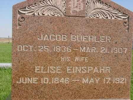 BUEHLER, JACOB & ELISE - Sac County, Iowa | JACOB & ELISE BUEHLER