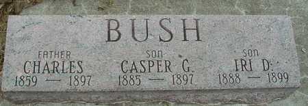 BUSH, CHARLES, CASPER, IRI - Sac County, Iowa | CHARLES, CASPER, IRI BUSH