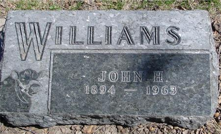 WILLIAMS, JOHN H. - Sac County, Iowa | JOHN H. WILLIAMS