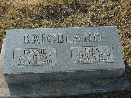 BRICELAND, FANNIE - Scott County, Iowa | FANNIE BRICELAND
