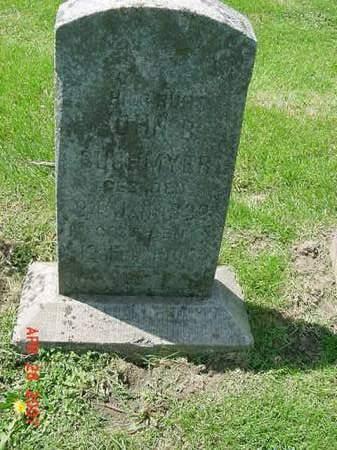 BUCHMYER, JOHN B - Scott County, Iowa | JOHN B BUCHMYER