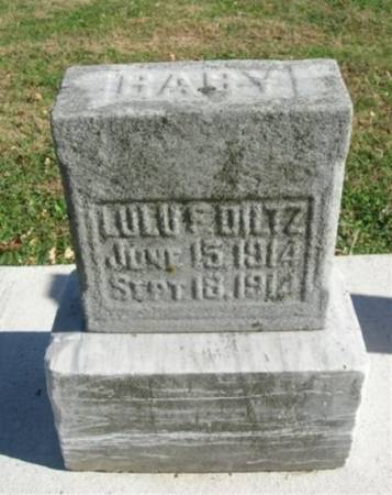 DILTZ, LULU - Scott County, Iowa | LULU DILTZ